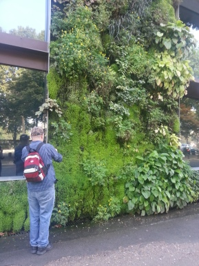 Marty at the green wall