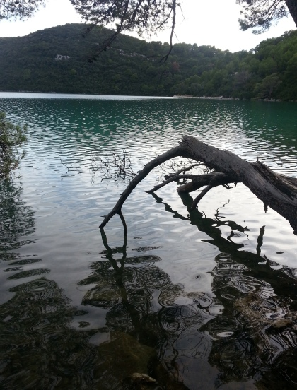 Lake at Mljet. Photo by Tracey Benson