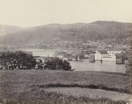 Photo credit: Henry Rosling c 1860