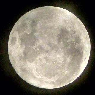 Full Moon by Garry Benson