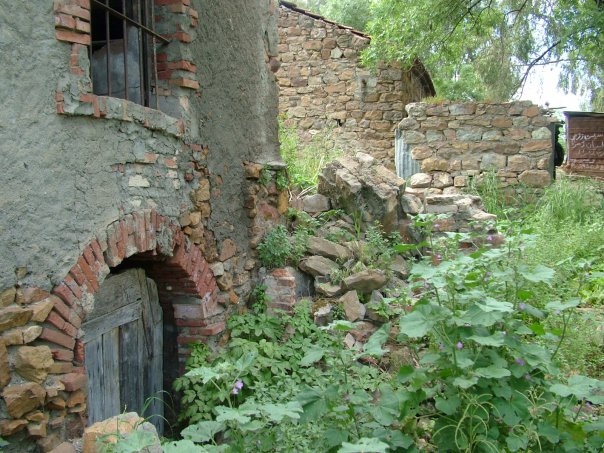 Ruin from the French Colonial Period © Tracey Benson 2008